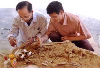 PGS-TS Nguyễn Lân Cường (trái) và giám đốc Quan Văn Dũng (phải) đang xử lý bộ xương người cổ ở Phia Vài.