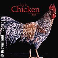 Năm con gà thường được cho năm đói kém.