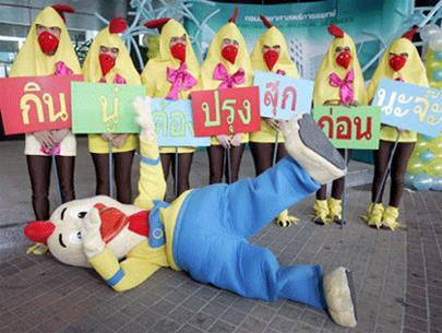"""Các nhân viên y tế Thái Lan hóa trang thành những chú gà để tuyên truyền phòng chống cúm gia cầm với câu khẩu hiệu """"Ăn gà nấu chín thì không nhiễm cúm gà"""""""