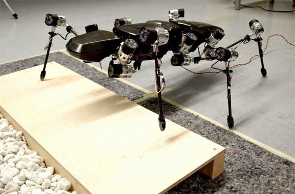 Robot bọ que 6 chân