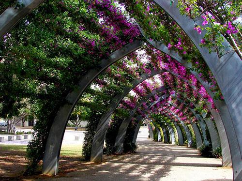 15 con đường hoa đẹp nhất thế giới