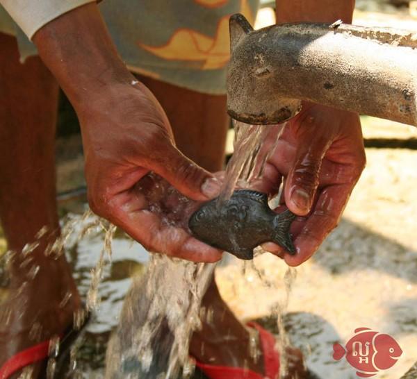 Chú cá thần kỳ gây sốt ở Campuchia